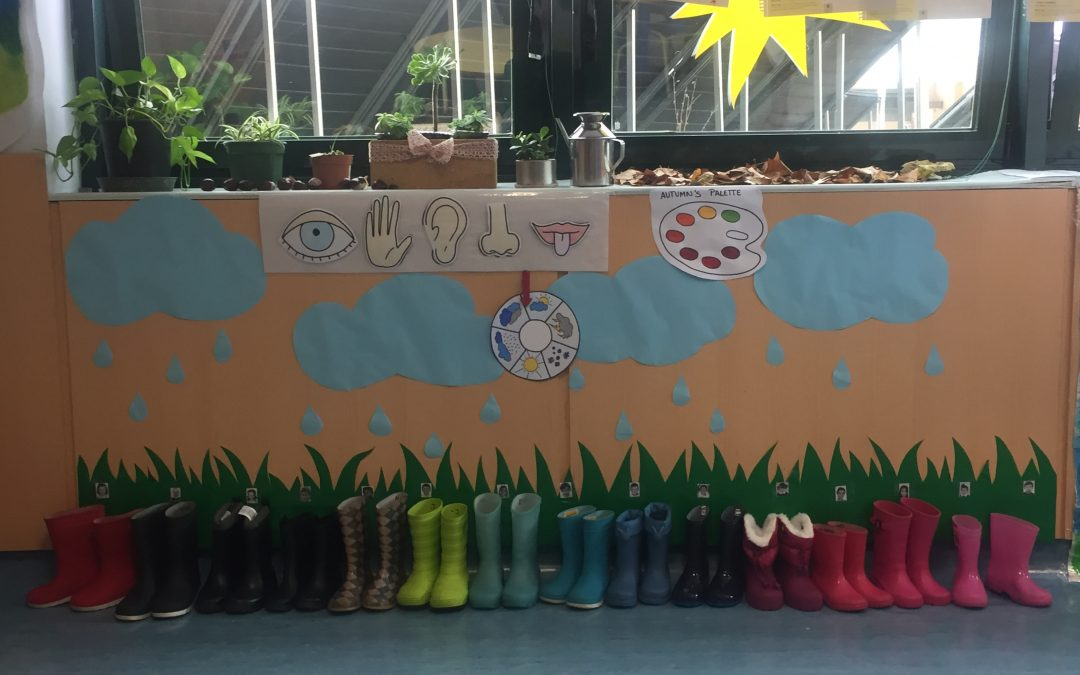 The Garden Project | Huerto en el colegio