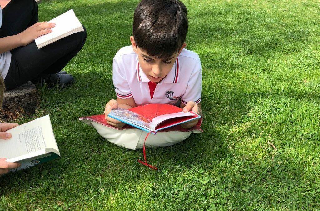 Cuentos infantiles para educar